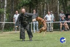 1-juni-keuring-venlo-118-van-266