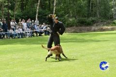 Keuring-Venlo-31-mei-19-104-van-129
