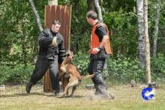 Keuring-Venlo-31-mei-19-65-van-129