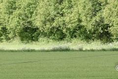 Clubkamp-Sph-Volharding-Venlo-100-van-227