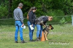 Clubkamp-Sph-Volharding-Venlo-127-van-227