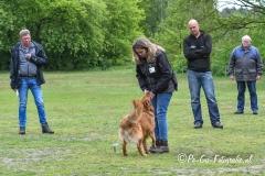 Clubkamp-Sph-Volharding-Venlo-199-van-227