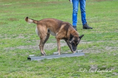Clubkamp-Sph-Volharding-Venlo-209-van-227