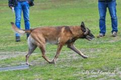 Clubkamp-Sph-Volharding-Venlo-210-van-227