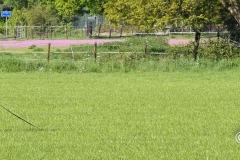 Clubkamp-Sph-Volharding-Venlo-68-van-227