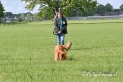 Clubkamp-Sph-Volharding-Venlo-85-van-227