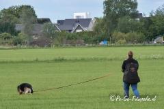 Clubkamp-Sph-Volharding-Venlo-93-van-227