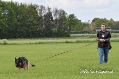 Clubkamp-Sph-Volharding-Venlo-96-van-227