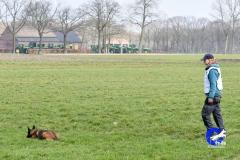 Koppelwedstrijd Stiphout '19 (123 van 179)