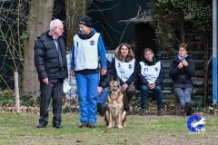 Koppelwedstrijd Stiphout '19 (126 van 179)