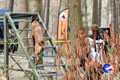 Koppelwedstrijd Stiphout '19 (52 van 179)