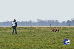 Koppelwedstrijd Stiphout '19 (69 van 179)