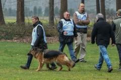 Koppelwedstrijd Stiphout '19 (8 van 179)