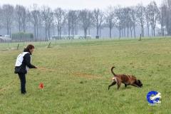 Koppelwedstrijd Stiphout '19 (80 van 179)