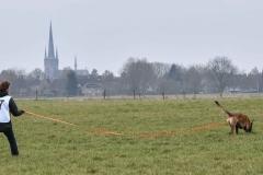 Koppelwedstrijd Stiphout '19 (81 van 179)