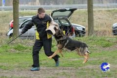 NGB-Midden-Brabant-Regiowedstrijd-5-6-100-van-336
