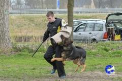 NGB-Midden-Brabant-Regiowedstrijd-5-6-101-van-336