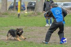 NGB-Midden-Brabant-Regiowedstrijd-5-6-107-van-336