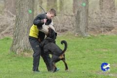 NGB-Midden-Brabant-Regiowedstrijd-5-6-115-van-336