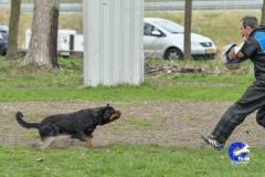NGB-Midden-Brabant-Regiowedstrijd-5-6-119-van-336