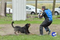 NGB-Midden-Brabant-Regiowedstrijd-5-6-120-van-336