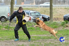 NGB-Midden-Brabant-Regiowedstrijd-5-6-125-van-336