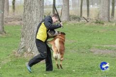 NGB-Midden-Brabant-Regiowedstrijd-5-6-128-van-336