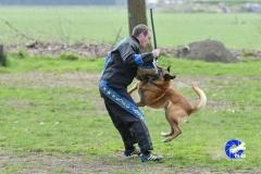 NGB-Midden-Brabant-Regiowedstrijd-5-6-133-van-336