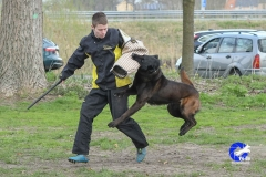 NGB-Midden-Brabant-Regiowedstrijd-5-6-140-van-336