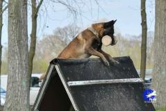NGB-Midden-Brabant-Regiowedstrijd-5-6-198-van-336