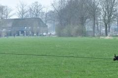 NGB-Midden-Brabant-Regiowedstrijd-5-6-2-van-336