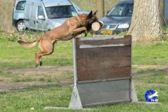 NGB-Midden-Brabant-Regiowedstrijd-5-6-203-van-336