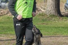 NGB-Midden-Brabant-Regiowedstrijd-5-6-229-van-336