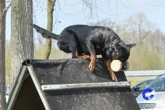 NGB-Midden-Brabant-Regiowedstrijd-5-6-258-van-336