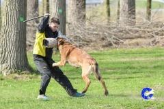 NGB-Midden-Brabant-Regiowedstrijd-5-6-271-van-336