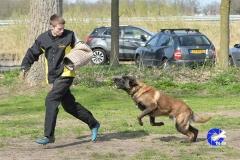 NGB-Midden-Brabant-Regiowedstrijd-5-6-275-van-336