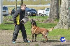 NGB-Midden-Brabant-Regiowedstrijd-5-6-280-van-336