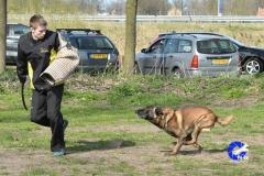 NGB-Midden-Brabant-Regiowedstrijd-5-6-286-van-336