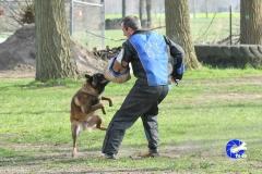 NGB-Midden-Brabant-Regiowedstrijd-5-6-291-van-336