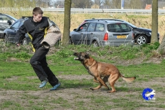 NGB-Midden-Brabant-Regiowedstrijd-5-6-295-van-336