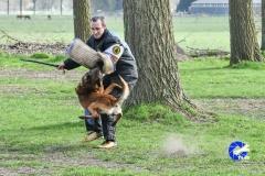 NGB-Midden-Brabant-Regiowedstrijd-5-6-299-van-336