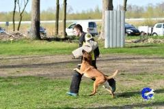 NGB-Midden-Brabant-Regiowedstrijd-5-6-305-van-336