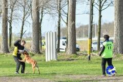 NGB-Midden-Brabant-Regiowedstrijd-5-6-307-van-336