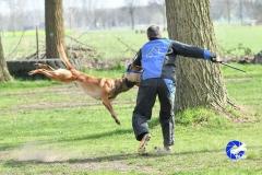 NGB-Midden-Brabant-Regiowedstrijd-5-6-312-van-336