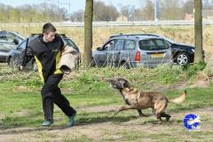 NGB-Midden-Brabant-Regiowedstrijd-5-6-314-van-336