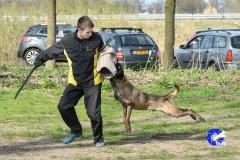 NGB-Midden-Brabant-Regiowedstrijd-5-6-315-van-336