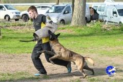 NGB-Midden-Brabant-Regiowedstrijd-5-6-317-van-336
