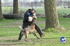 NGB-Midden-Brabant-Regiowedstrijd-5-6-323-van-336