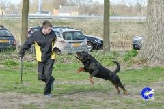 NGB-Midden-Brabant-Regiowedstrijd-5-6-325-van-336