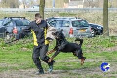 NGB-Midden-Brabant-Regiowedstrijd-5-6-326-van-336